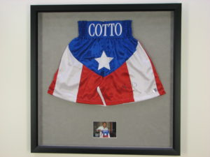 Cotto Shorts